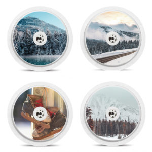 Set of 4 Winter Themed Freestyle Libre Stickers